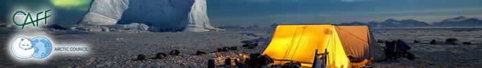 Фотоконкурс «Арктическое биоразнообразие через объектив»