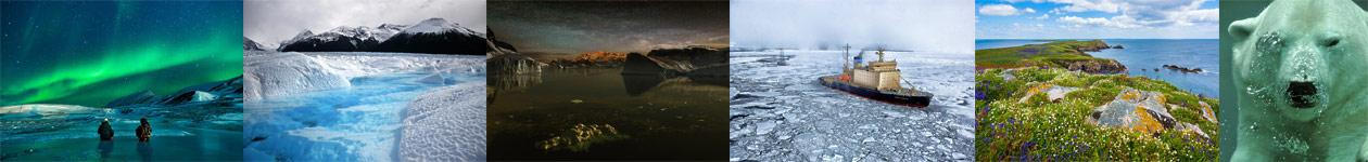 Фотоконкурс «Арктика в объективе»