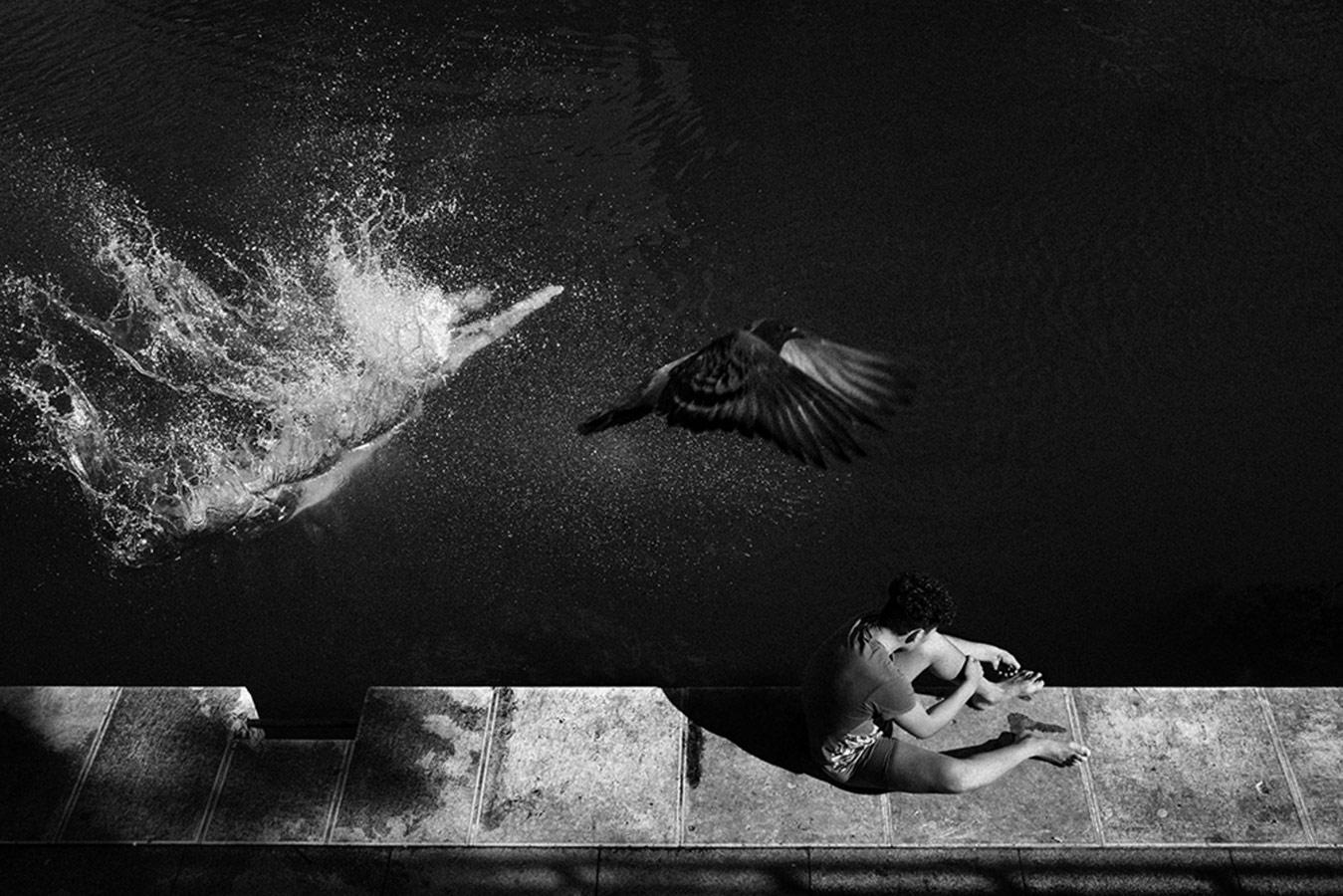 © Уго Аймар, Без названия, Победитель категории «Документальная фотография» (одиночный кадр), Конкурс уличной фотографии ASPA