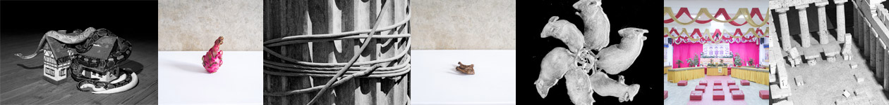 Фотоконкурс «Начинается новая жизнь» - Incipit Vita Nova