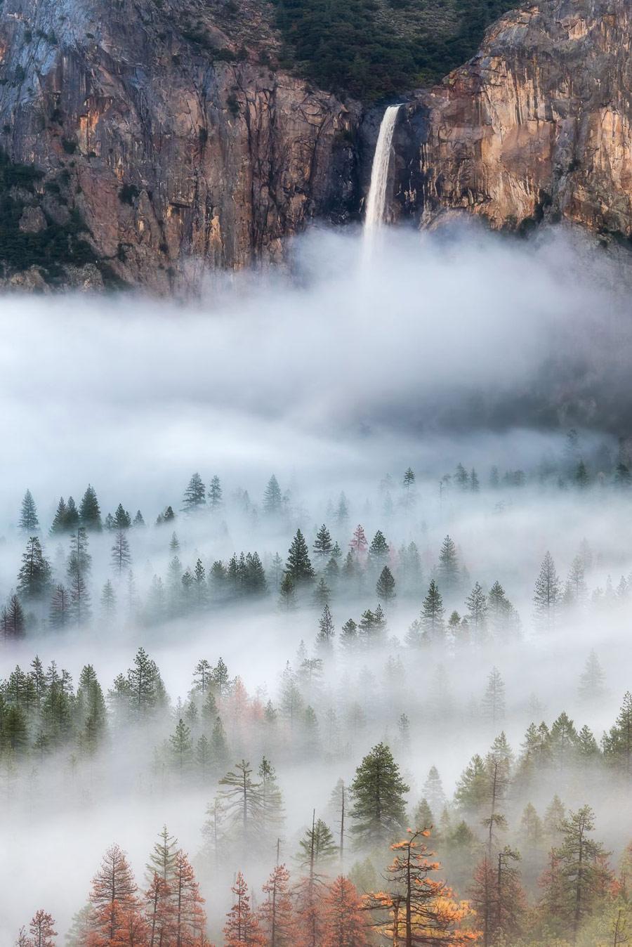 В тумане, © Брэндон У, Победитель категории «Окружающая среда», Фотоконкурс CEPIC Stock Photography Awards