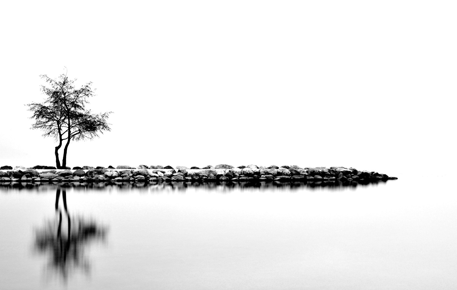 Одинокое дерево, © Ими Кётц, Пейзажи, Фотоконкурс CEWE