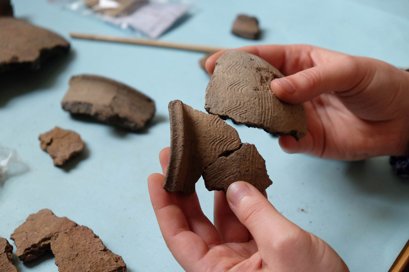 Археологические находки раннесредневековых захоронений, © Archeologia.chodlik, Конкурс научных фотографий «Снимай науку»