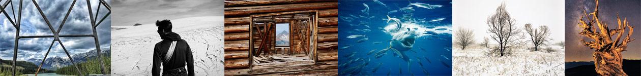 Конкурс экологической фотографии