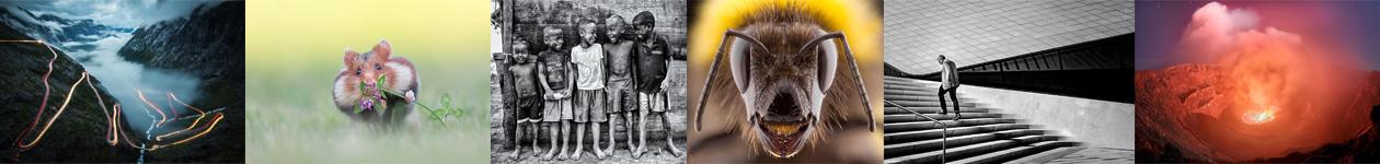 Фотоконкурс «Фотограф года от Digital Camera»