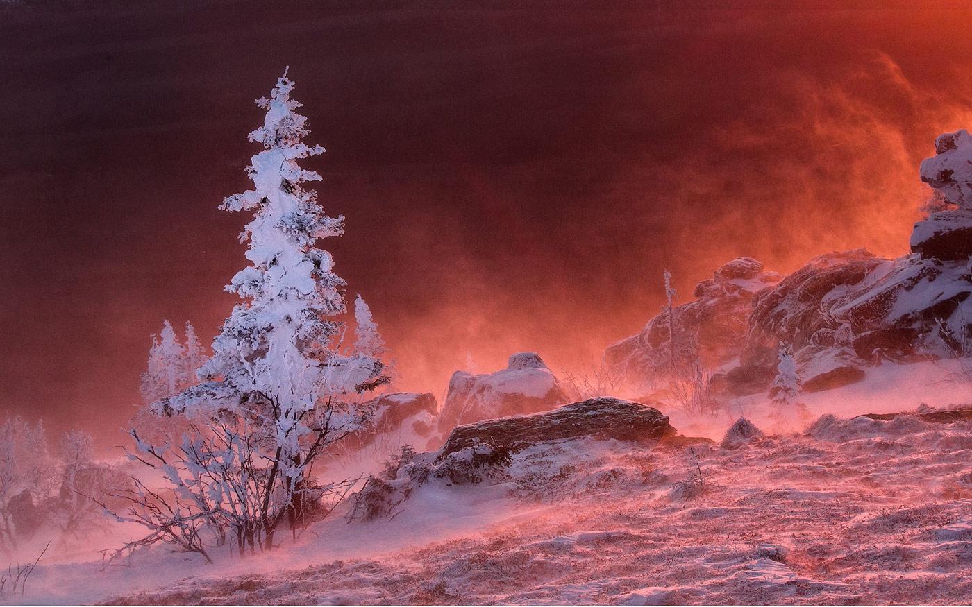 Огненный снег, © Наталия Федосова, 3-е место в номинации «Пейзажи», Фотоконкурс «Дикая природа России» от National Geographic