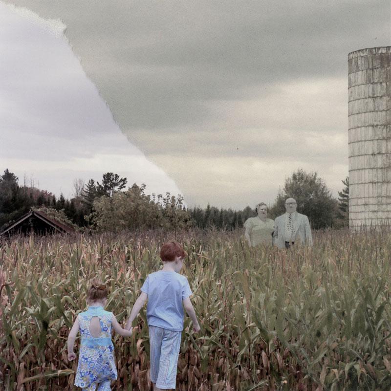 Постоянство семьи, автор Диана Черен Нигрен, США