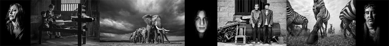 Конкурс чёрно-белой фотографии от журнала Dodho