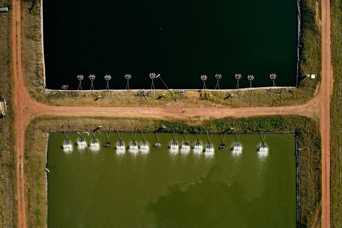 Рыбоводческая ферма, © foonji, Конкурс фотографий с дрона Dronestagram