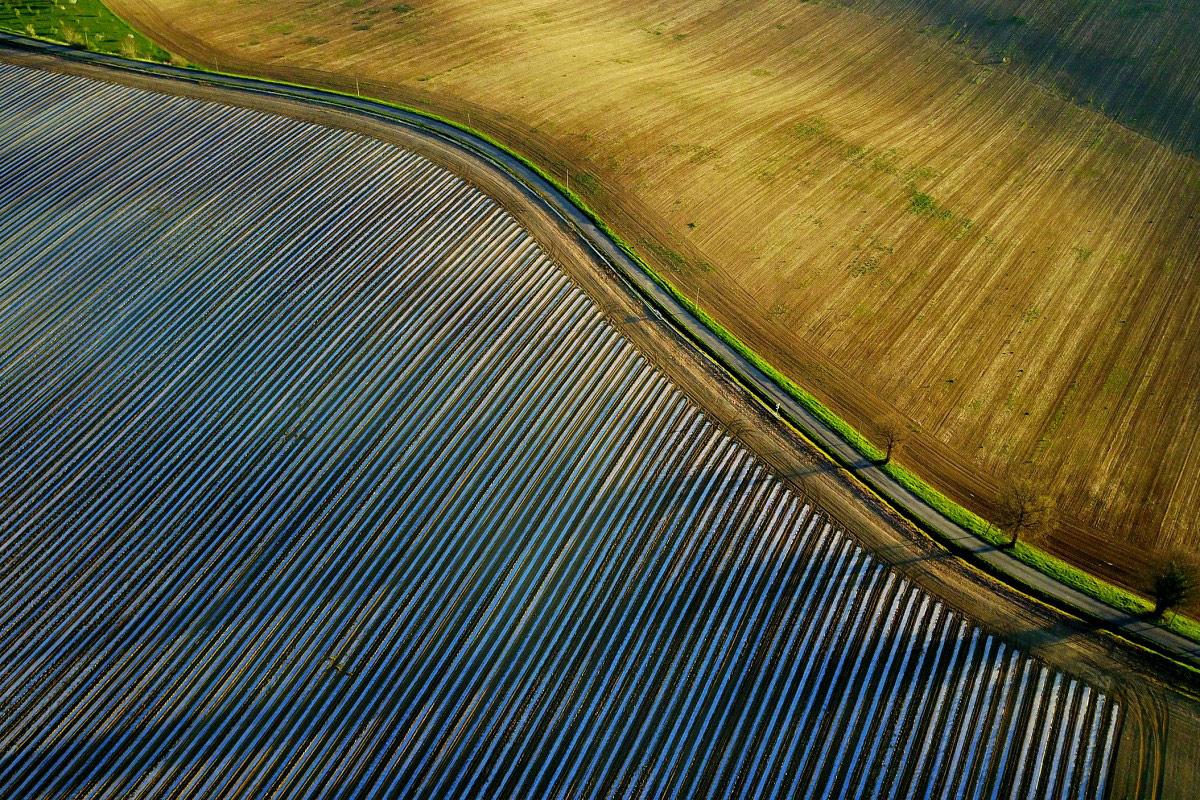 Утро в Ломанье, © Charlie-82, Конкурс фотографий с дрона Dronestagram