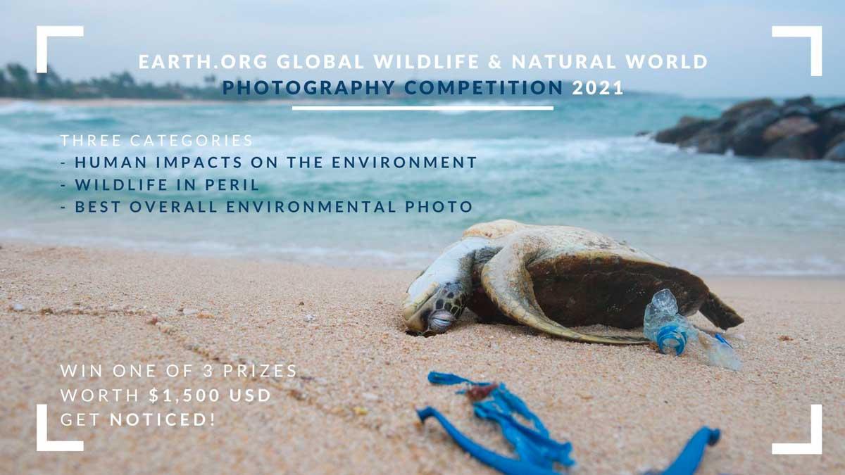 Глобальный конкурс фотографий дикой природы и природы