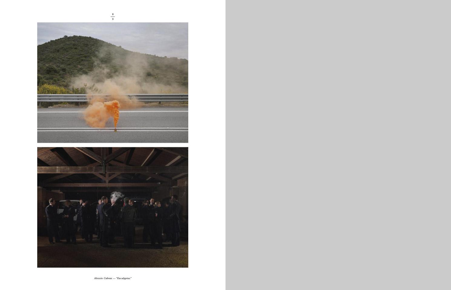 Эвкалипт © Алессио Кабрас, Фотоконкурс «Начинающий фотограф» — Emerging Photographer