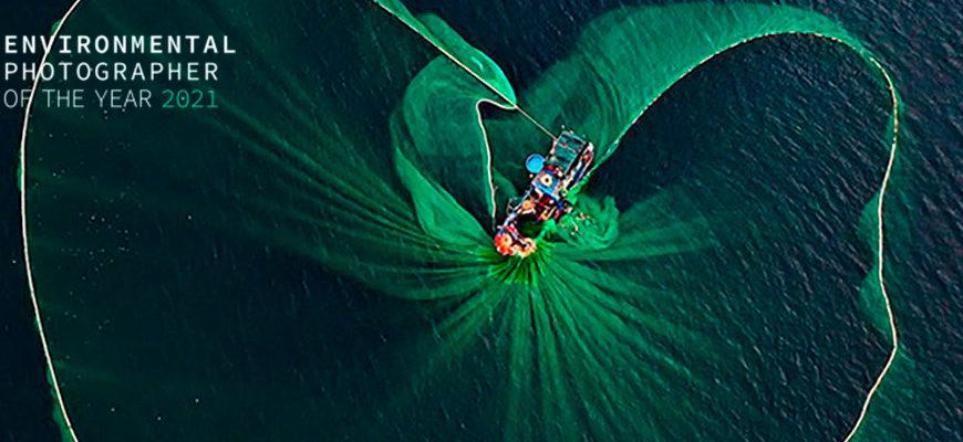 Фотоконкурс Environmental Photographer of the Year