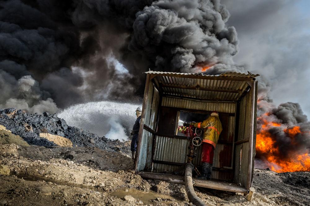 © Алессандро Рота / Alessandro Rota, Финалист конкурса, Фотоконкурс Environmental Photographer of the Year