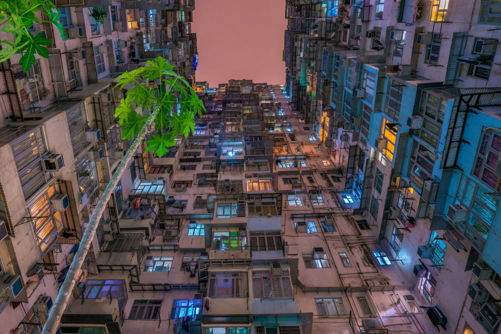 © Хунх Су / Huynh Thu, Финалист конкурса, Фотоконкурс Environmental Photographer of the Year