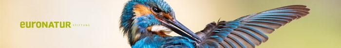 Фотоконкурс «Сокровища природы» - EuroNatur