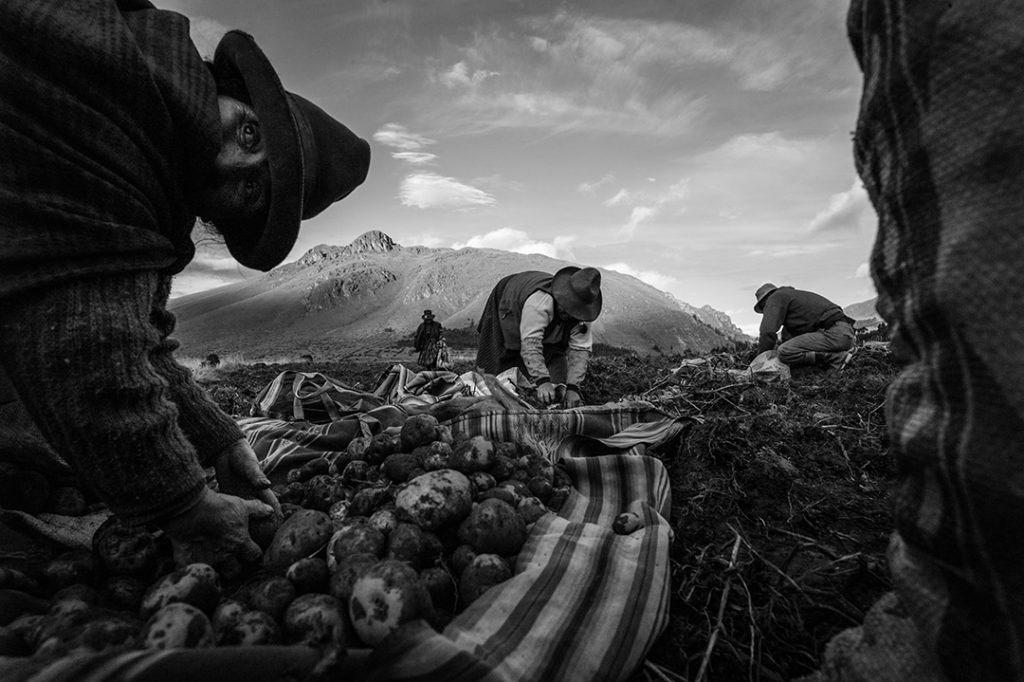 © Чинк Алессандро, Категория «Люди и уличная фотография», Международная фотопремия Италии — FIIPA