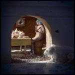 Через мышиную норку, © Гэвин Смарт, Победитель категории «Открытая тема» (профессионал), Фотоконкурс Fine Art