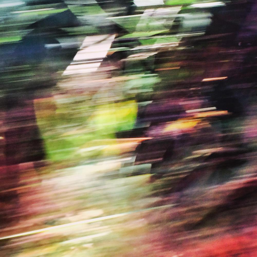Корнишские дороги (изгороди), в потоке - B3306-1, © Нпикола, 3 место экспертного мнения, Фотофестиваль FIX