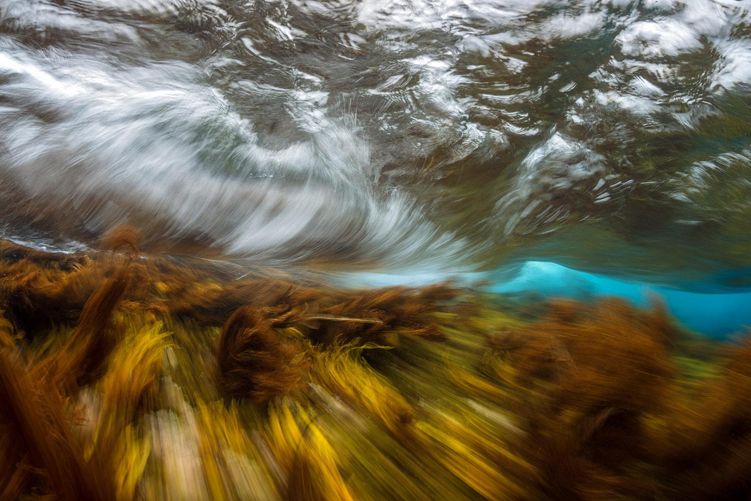 Осенний шторм, © Сергей Шанин, Третье место, Фотоконкурс «Золотая Черепаха»