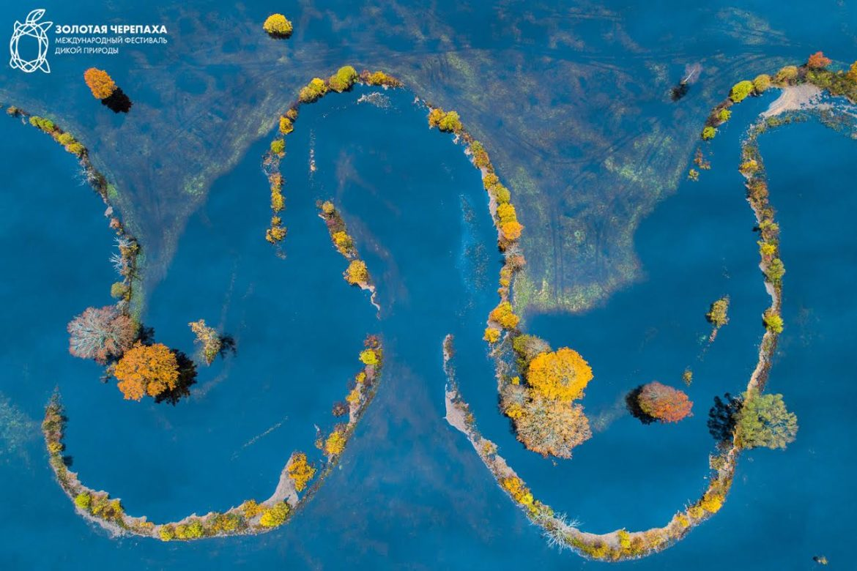 Осенняя палитра, © Свен Засек, Победитель, Фотоконкурс «Золотая Черепаха»