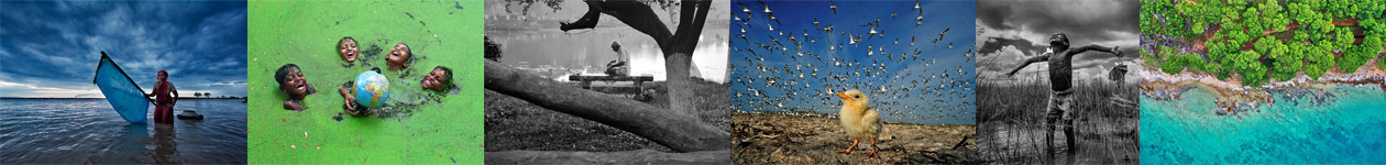 Конкурс фотографии природы Greenstorm