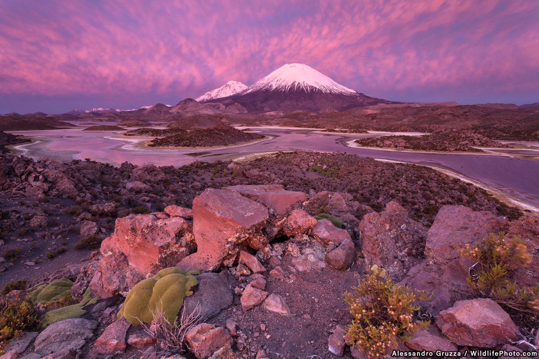 Розовое извержение, © Алессандро Грузза, Второе место, Фотоконкурс «Места обитания и ландшафты»