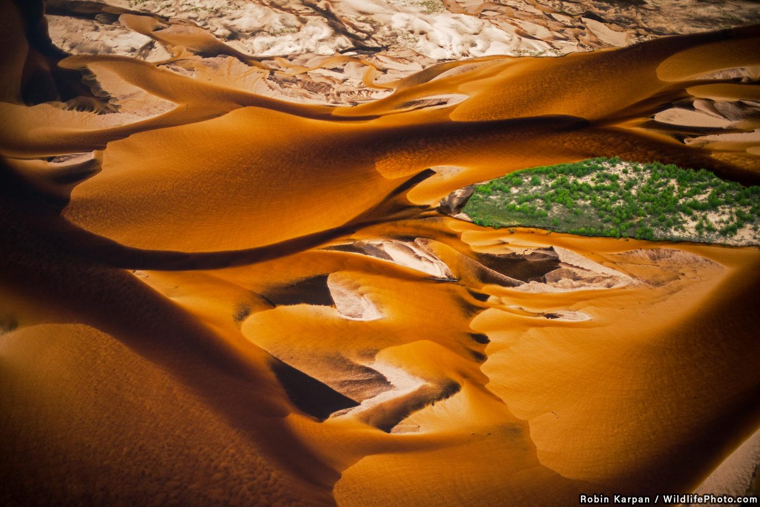Удушение песком, © Робин Карпан, Высокая оценка, Фотоконкурс «Места обитания и ландшафты»