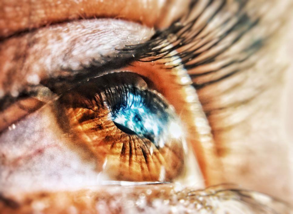 © sharang****@gmail.com, Фотоконкурс «Увидеть невидимое» от HONOR