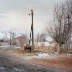 Затенённый путь, © Эллиот Вердье, Франция, Конкурс документальной фотографии IAFOR