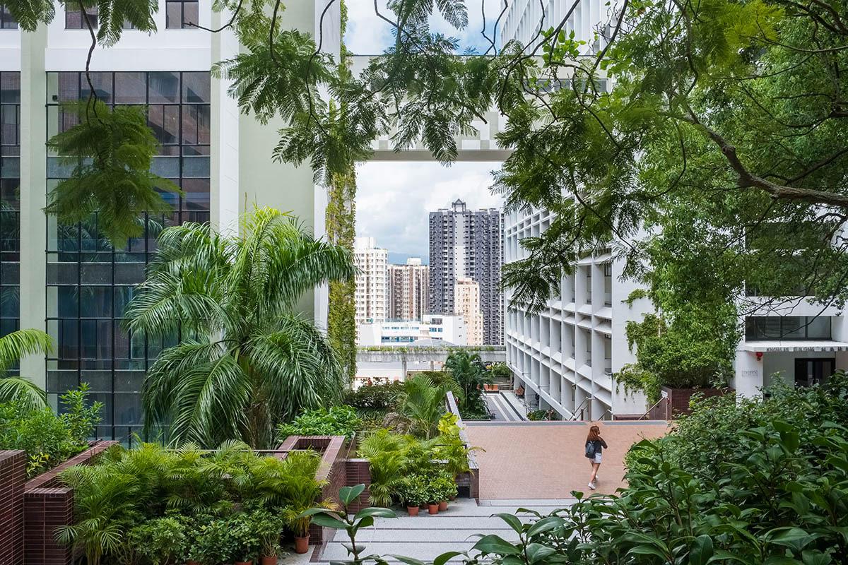 Городской университет, © Энни Грин-Армитейдж, 1-е место, Фотоконкурс «Международный садовый фотограф года»