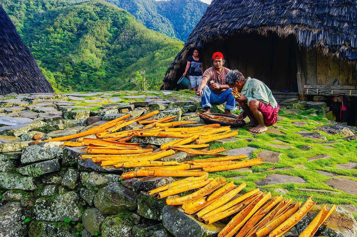 Фермер корицы, © Суванди Чандра, 3-е место, Фотоконкурс «Международный садовый фотограф года»