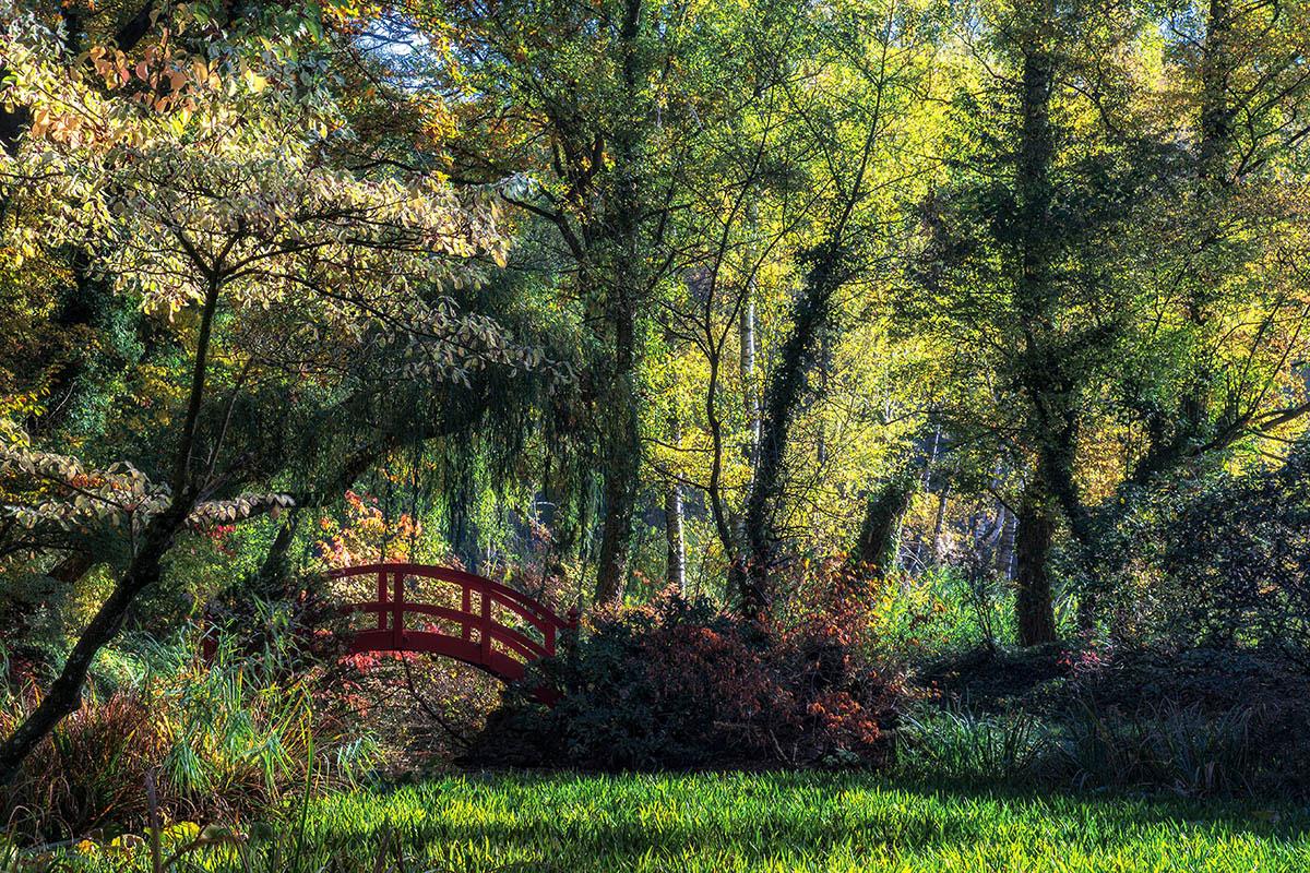 Осенние впечатления у Красного моста, © Даниэль Дугре, 2-е место, Фотоконкурс «Международный садовый фотограф года»