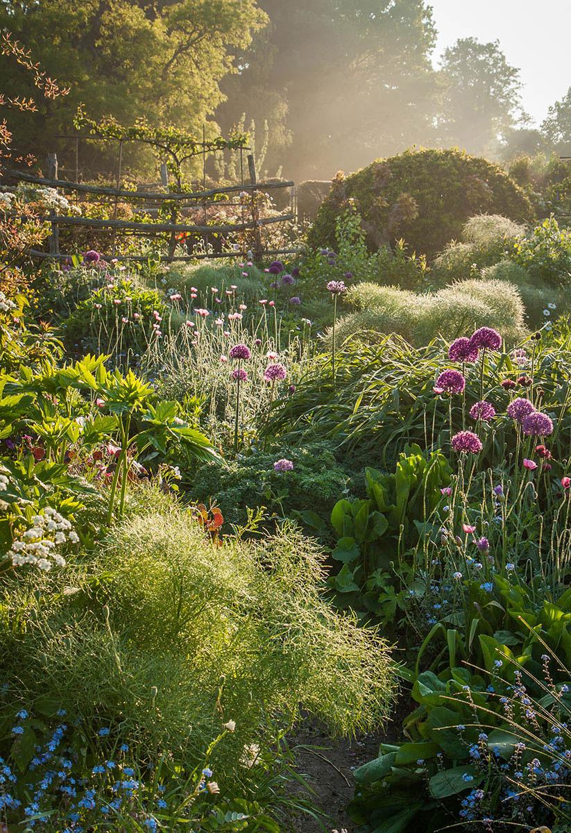 Сквозь сад, © Ники Флинт, 1-е место, Фотоконкурс «Международный садовый фотограф года»