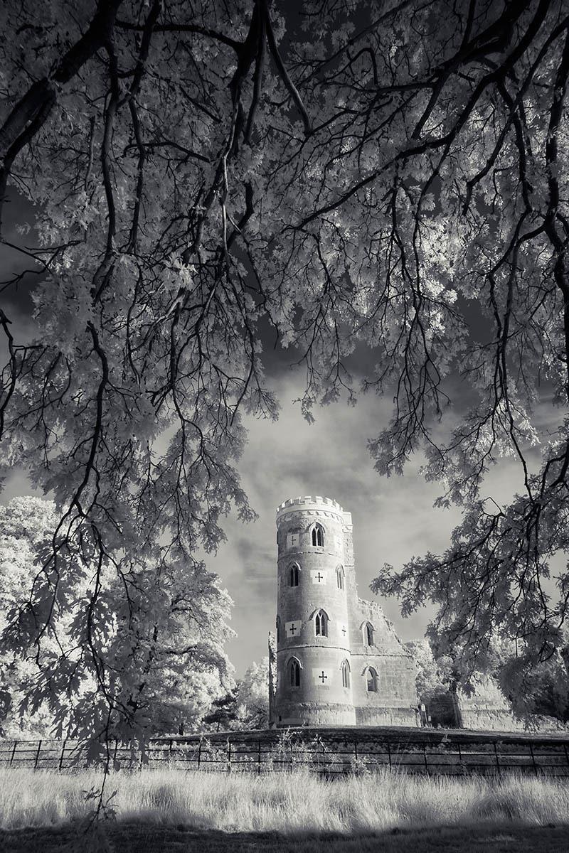 Безумство, © Джастин Миннс, 2-е место, Фотоконкурс «Международный садовый фотограф года»