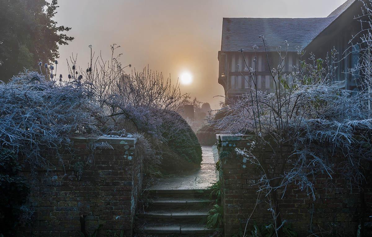 Середина зимы, © Джон Гловер, 3-е место, Фотоконкурс «Международный садовый фотограф года»