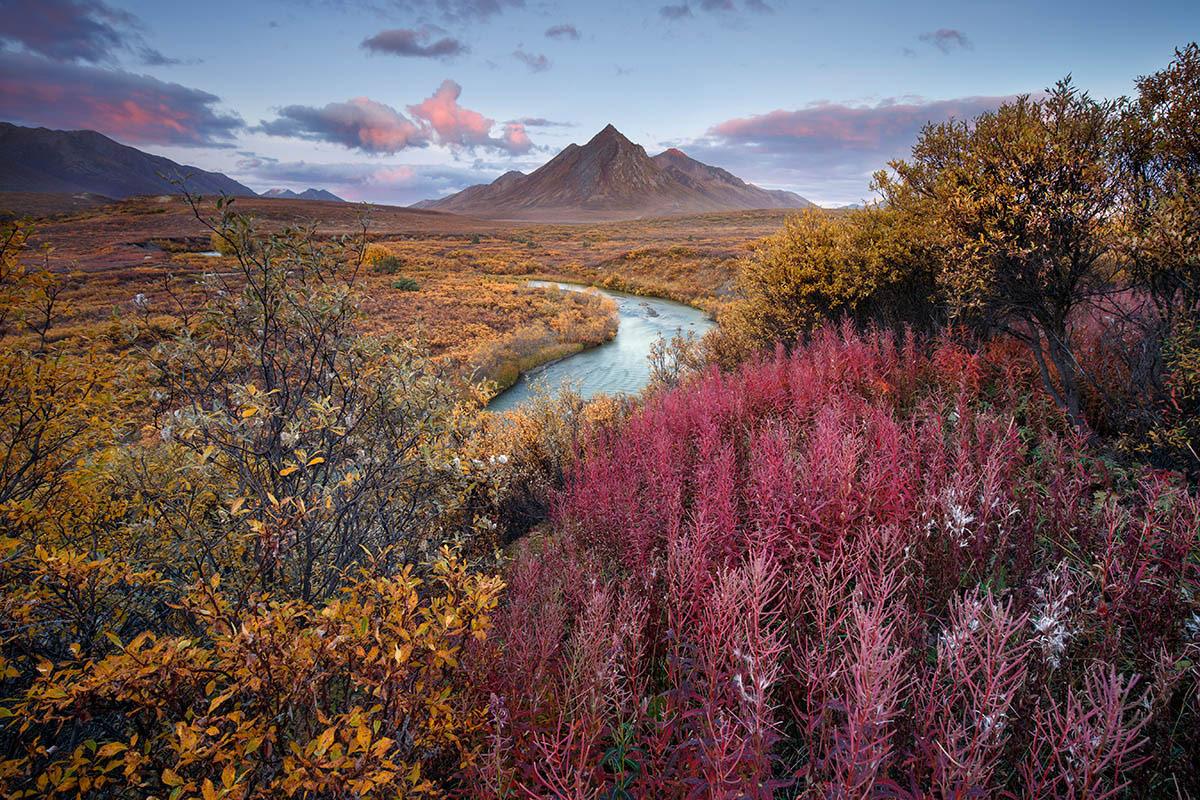 Серендипность, © Андреа Поцци, 1-е место, Фотоконкурс «Международный садовый фотограф года»