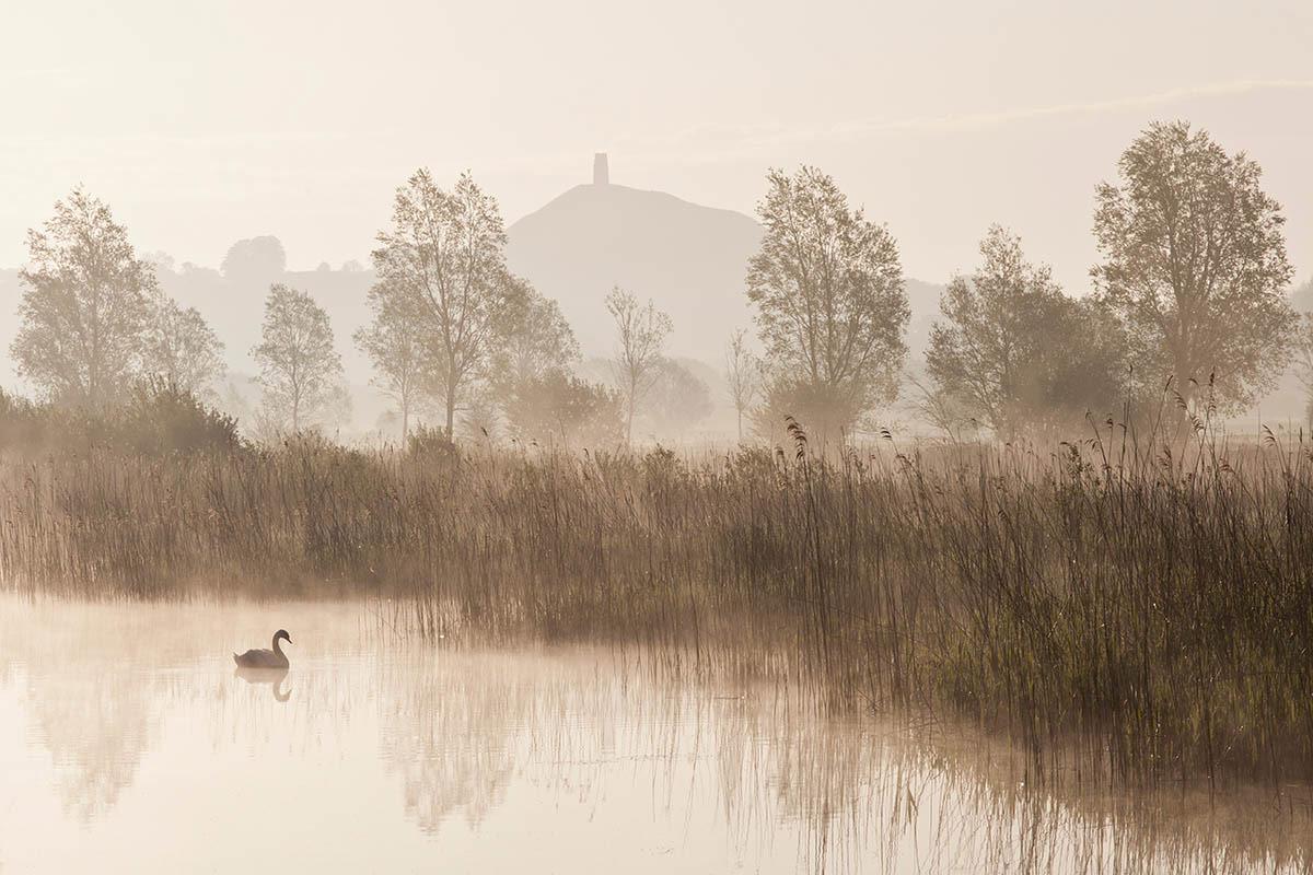 Мистический Гластонбери Тор, © Есен Тунар, 2-е место, Фотоконкурс «Международный садовый фотограф года»