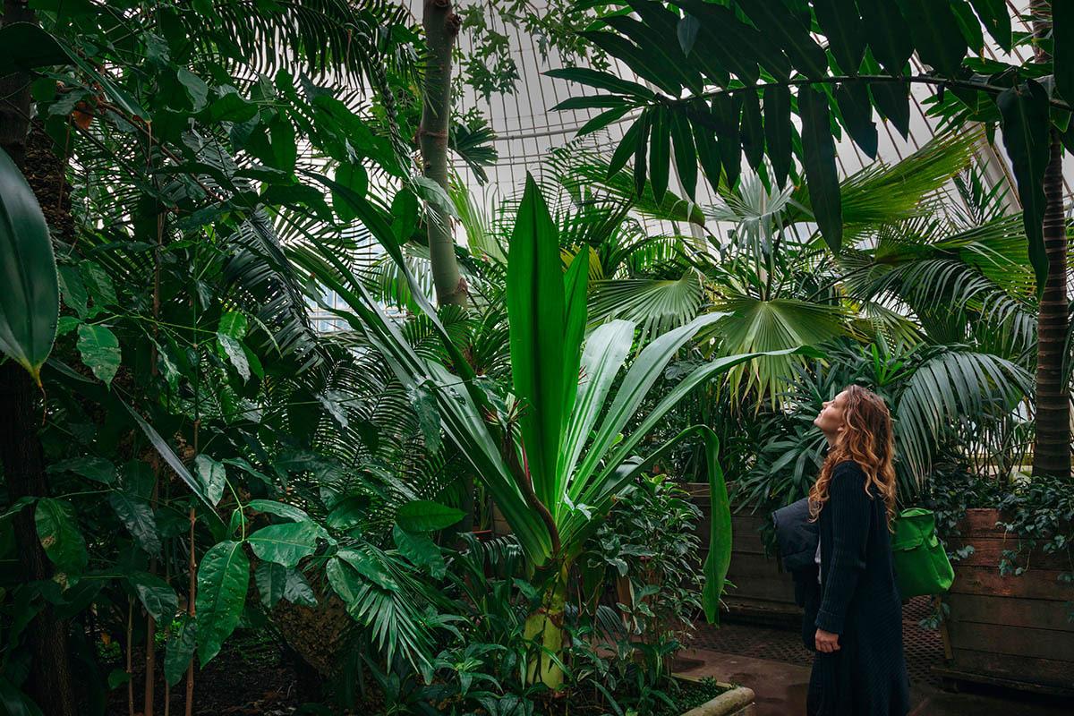 © Винченцо Ди Нуццо, Затерянная в пышной красоте, Фотоконкурс «Международный садовый фотограф года» — IGPOTY