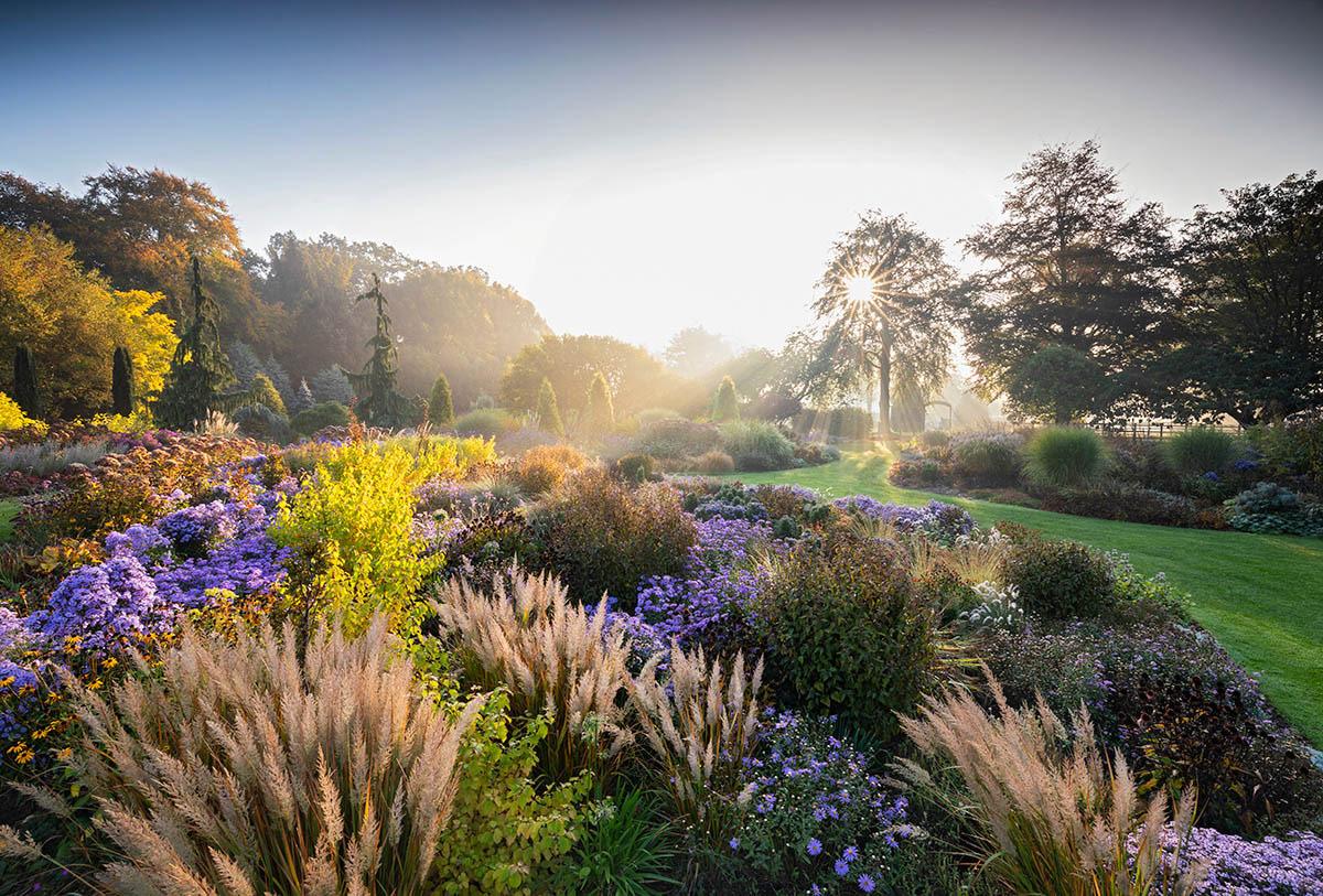 © Ричард Блум, Брессингемские сады осенью, Фотоконкурс «Международный садовый фотограф года» — IGPOTY