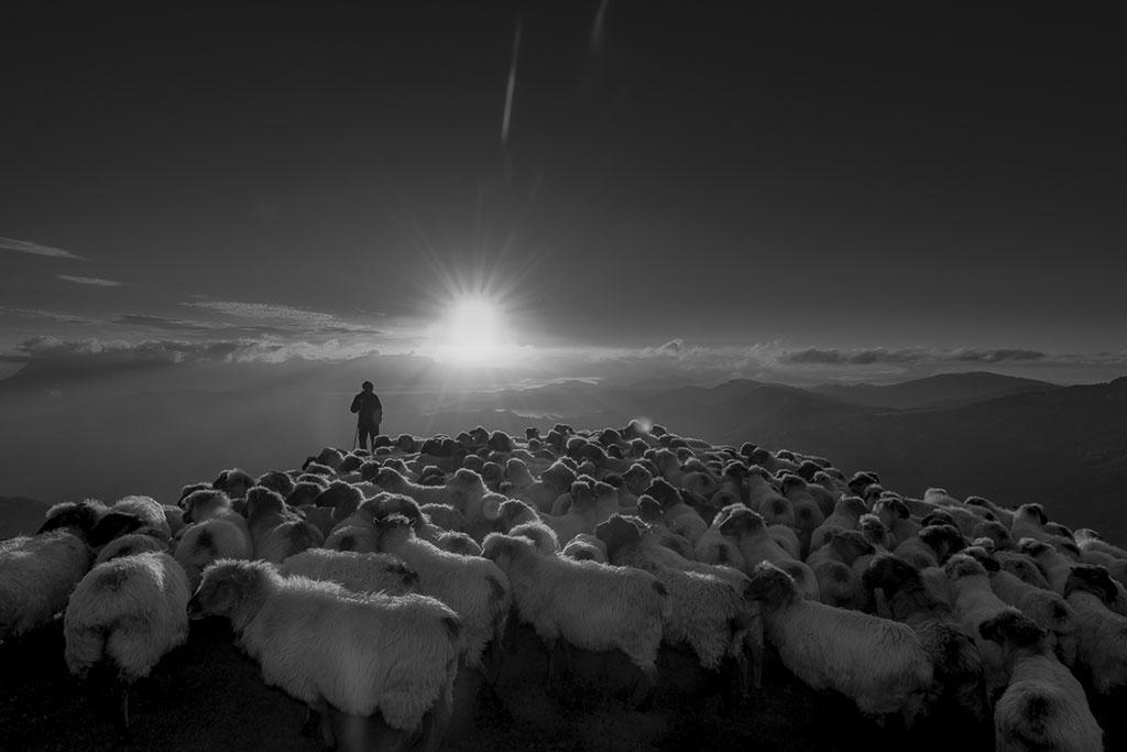Вся жизнь, © Ихриль Моро, Фотоконкурс Ikei