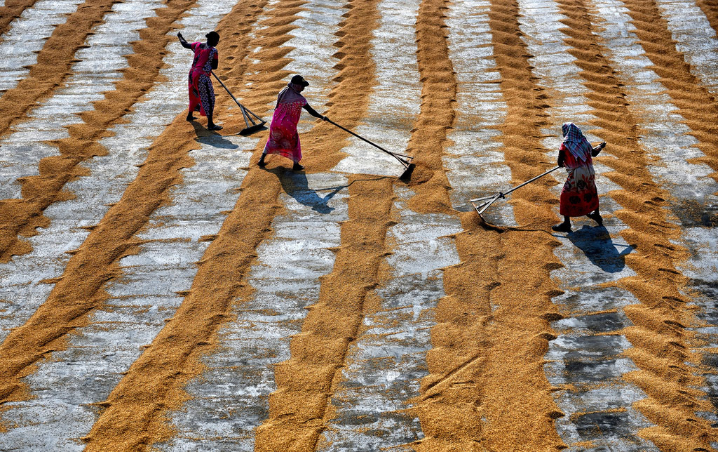 Женщины на работе, © Авишек Дас, 3-е место, Фотоконкурс InterAction's