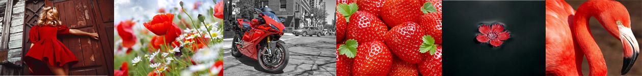 Фотоконкурс «Это красное» / It Is Red
