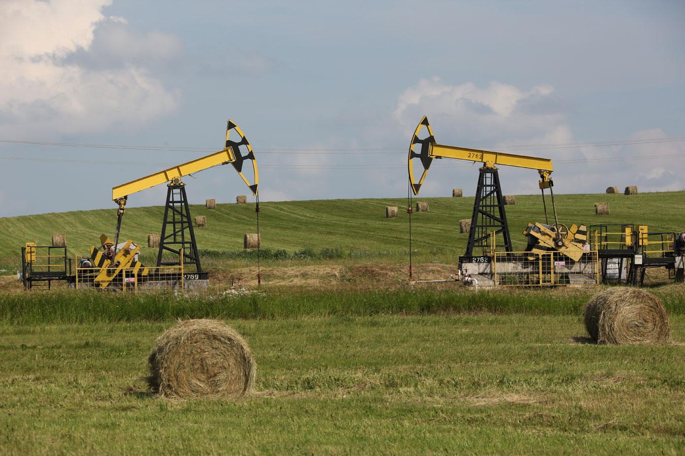 Благополучное соседство, Фотоконкурс «Энергетика современной России»