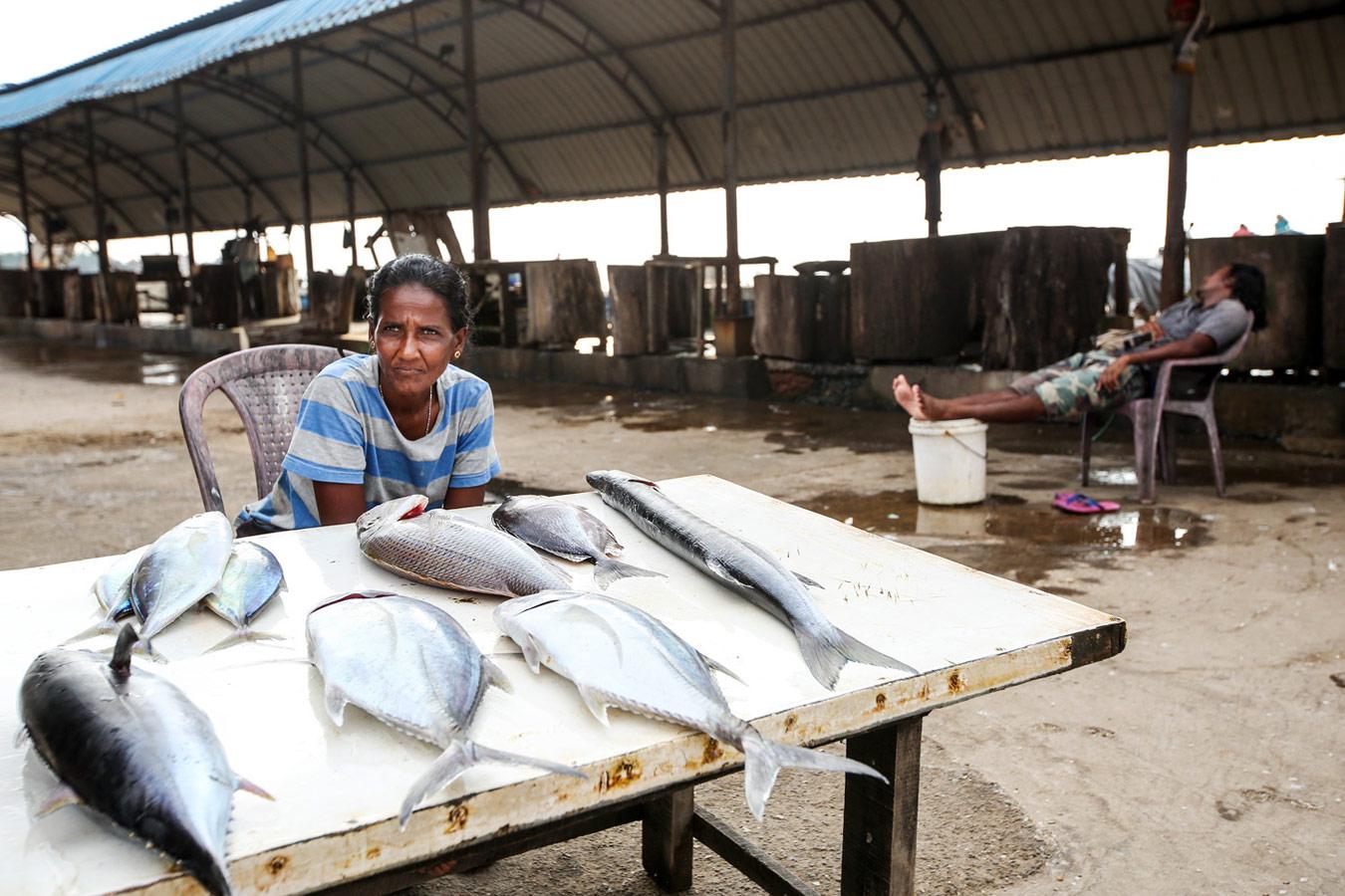 Рыбный рынок Негомбо, Шри-Ланка, © Сынгук Ли, Южная Корея, Конкурс портретной фотографии Kuala Lumpur