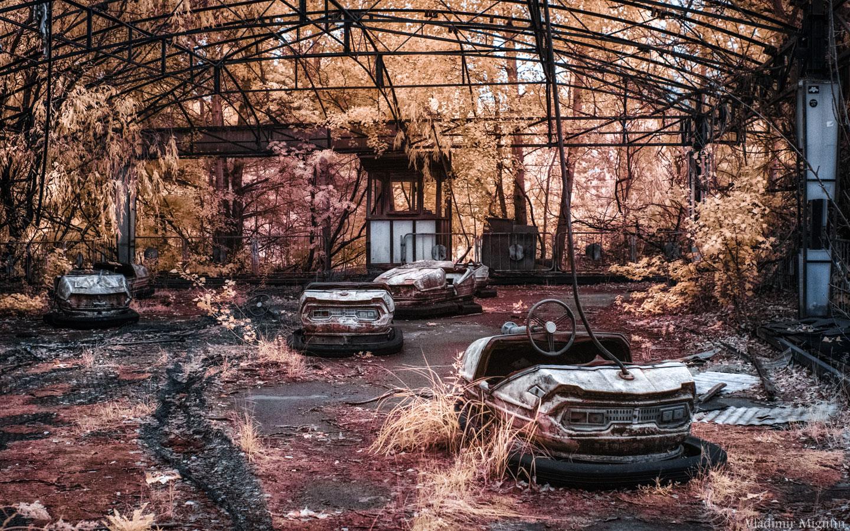 © Владимир Мигутин, Фотоконкурс «Жизнь в инфракрасном свете»
