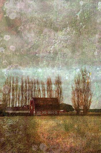 Идите налево, © Лиз Руст, Фотоконкурс «Художественные пейзажи» — Landscapes Art