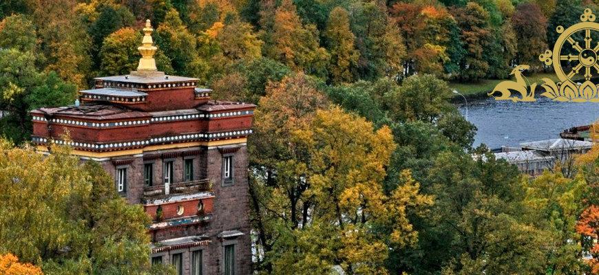Фотоконкурс «Лотос большого города»