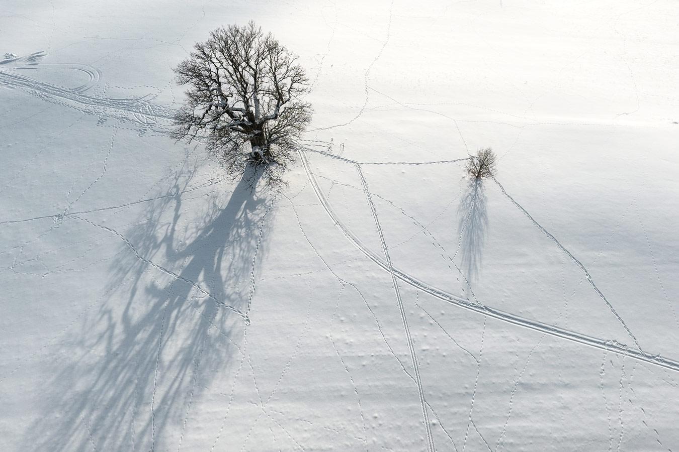 Следую за тобой тенью, © Янек Йоаб, Фотоконкурс «Священные природные места»