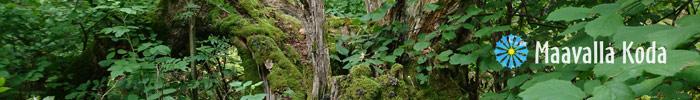 Фотоконкурс «Священные природные места»